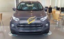 Bán Ford EcoSport Trend đời mới, giá thương lượng