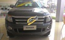 Bán Ford Ranger XLT 4x4 MT, màu xám, nhập khẩu chính hãng, hỗ trợ trả góp tại Hòa Bình