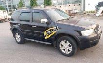 Bán Ford Escape XLT sản xuất 2004, màu đen