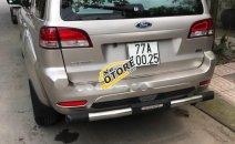 Cần bán gấp xe cũ Ford Escape XLS 2009, màu vàng