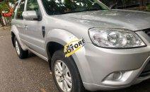 Cần bán xe Ford Escape XLS năm sản xuất 2010, màu bạc, giá chỉ 425 triệu