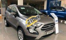 Bán xe Ford EcoSport Trend năm sản xuất 2018, màu bạc
