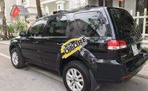 Cần bán xe Ford Escape XLS đời 2013, màu đen số tự động, giá 510tr