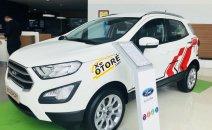 Bán xe Ford EcoSport Trend năm sản xuất 2019, màu trắng