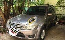 Cần bán lại xe Ford Escape AT đời 2009, màu bạc chính chủ
