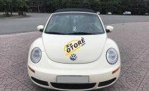 Bán xe Volkswagen New Beetle 2.5 SX 2009