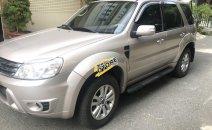 Bán xe Ford Escape 2.3L, số tự động, 1 cầu đời 2010, màu ghi vàng