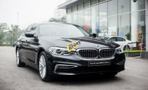 BMW 530i Luxury Line - Nhập khẩu từ Đức mới 100% - giảm 120 triệu
