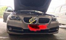 Bán BMW 520i sản xuất 2015, màu vàng, xe nhập