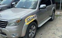Cần bán lại xe Ford Everest AT sản xuất 2009, màu bạc, nhập khẩu