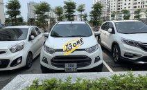 Bán xe Ford EcoSport sản xuất 2014, màu trắng, nhập khẩu