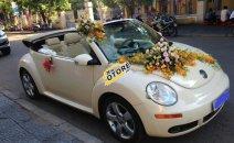 Bán ô tô Volkswagen New Beetle 2.5 AT năm sản xuất 2005, màu kem (be), xe nhập