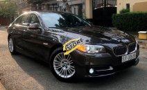 Cần bán gấp BMW 5 Series 520i sản xuất 2014, nhập khẩu nguyên chiếc