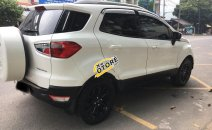 Bán Ford EcoSport Titanium đời 2015, màu trắng số tự động giá cạnh tranh