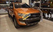Ford Ford Ranger Wildtrak 2.0 Bi-Turbo năm 2019 Siêu giảm giá - Nhận quà liền tay - Có xe giao tận nhà