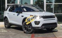 Bán LandRover Discovery SE năm sản xuất 2019, màu trắng, nhập khẩu nguyên chiếc