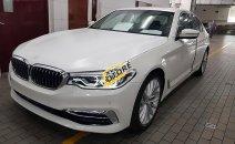 Bán siêu xe - Giá siêu rẻ, BMW 5 Series 530i năm 2019, màu trắng, xe nhập