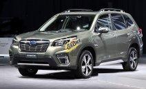 Cần bán nhanh chiếc Subaru Forester giá thấp, sản xuất 2019, nhập khẩu nguyên chiếc