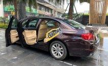 Bán ô tô BMW 5 Series 520i năm sản xuất 2012, nhập khẩu nguyên chiếc chính chủ, giá 930tr