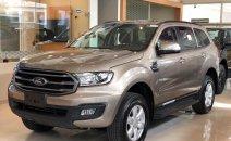 Bán Ford Everest sản xuất 2020, nhập khẩu nguyên chiếc, giá chỉ 879 triệu